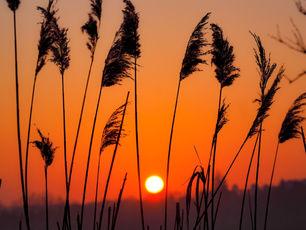 Lever de soleil en Picardie