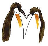 logo rookerie avec deux pingouins