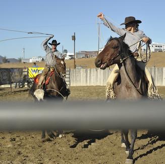 CALIFORNIA - Cowgirl doing roping