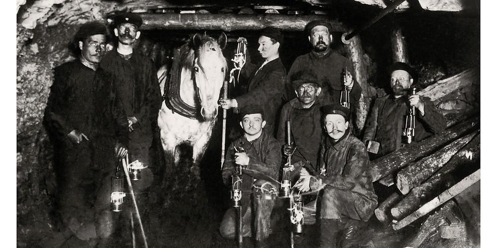"""Vernissage """"Kumpel auf vier Beinen"""" - Grubenpferde im Bergbau"""