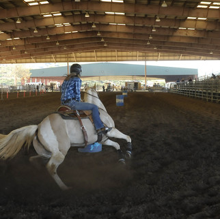 WESTERN DRESSAGE AND HORSE SHOW