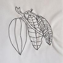 Cacao-detalle-WEB.jpg