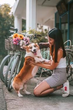 01 Goldey and Belle Dog Tiong Baru (7)