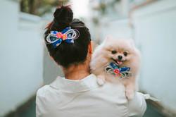 01 Goldey and Belle Dog Tiong Baru (1)