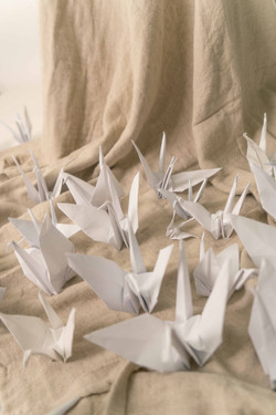 Dylan One Thousand Paper Cranes Photosho