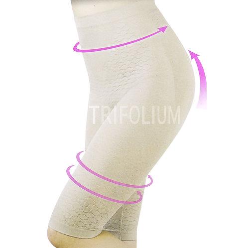 1 dozen Seamless Control High Waist with Leg to Knee 3782