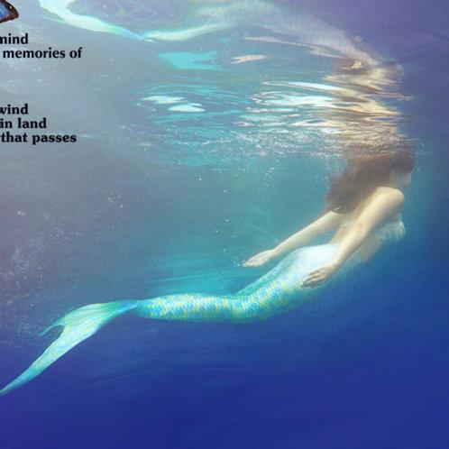 SwimWear Costume Mermaid Tail Bikini Set