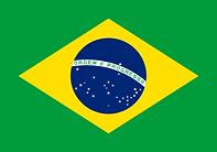 Flag_of_Brazil.svg.png