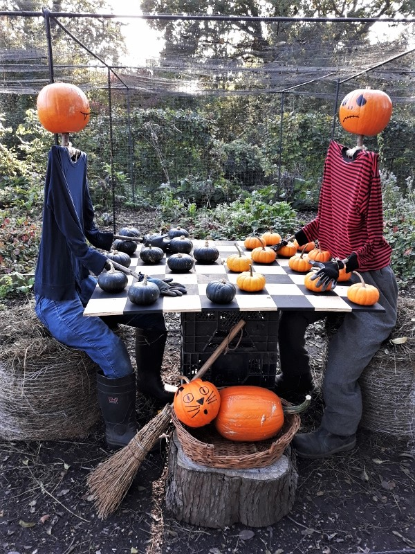 27. Pumpkin People