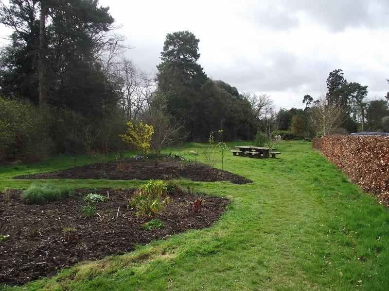 12. New Beds in Arboretum