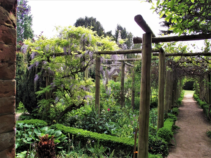 15. Wisteria - May 2011