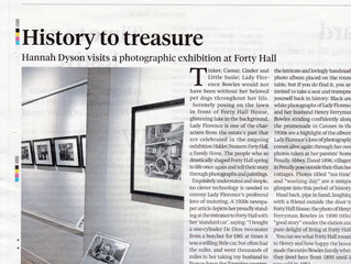 Review of the Bowles Family Exhibition at Forty Hall