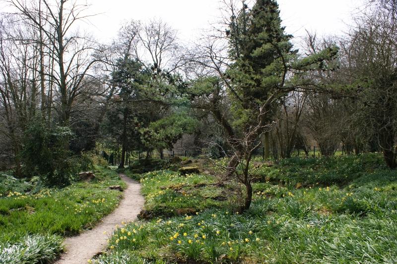 11. Rock Garden