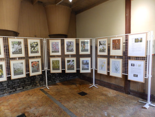 The E.A. Bowles Exhibition at Myddelton House