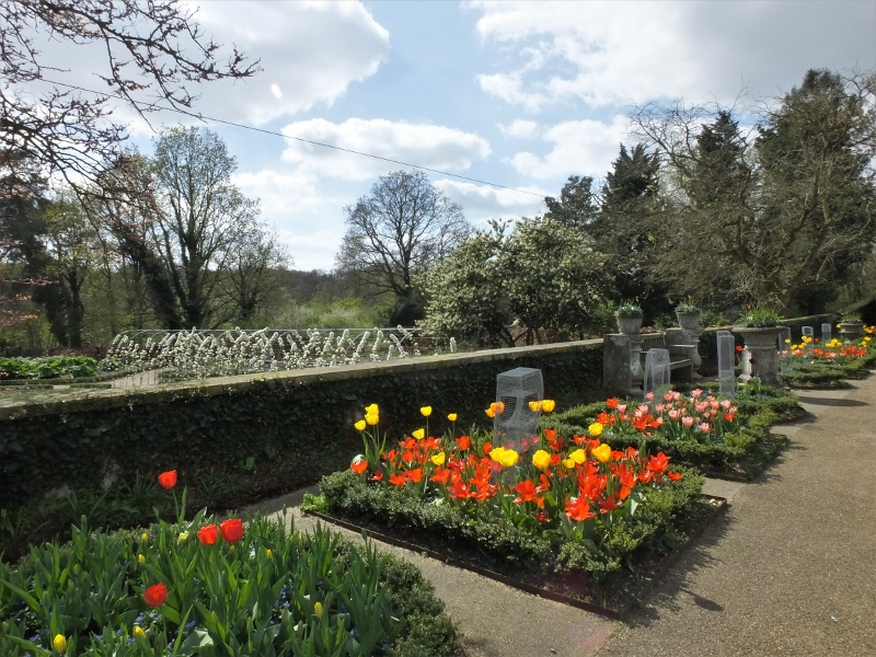 11. Tulip Terrace