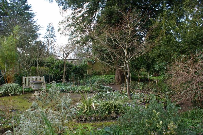 4. Wild Garden