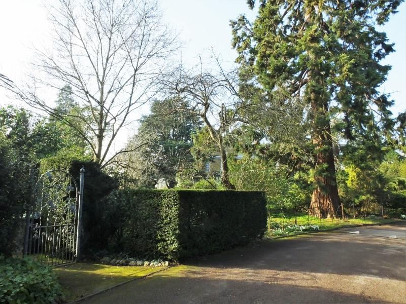 3. Christine's gate - before