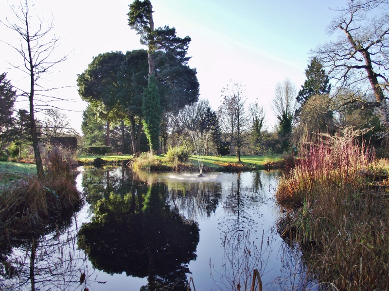 26. Pond