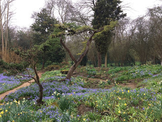 Some early April shots of the Garden from Stephen Boyd-Davis