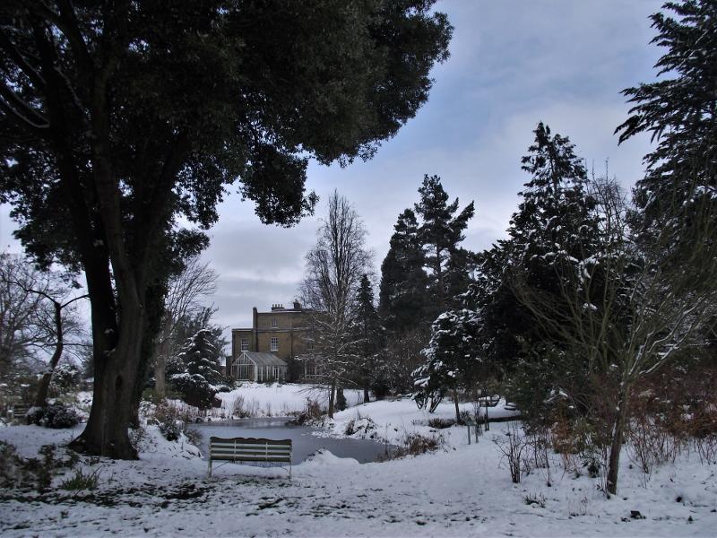 1. Snow