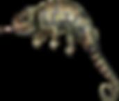 Kameleon.png