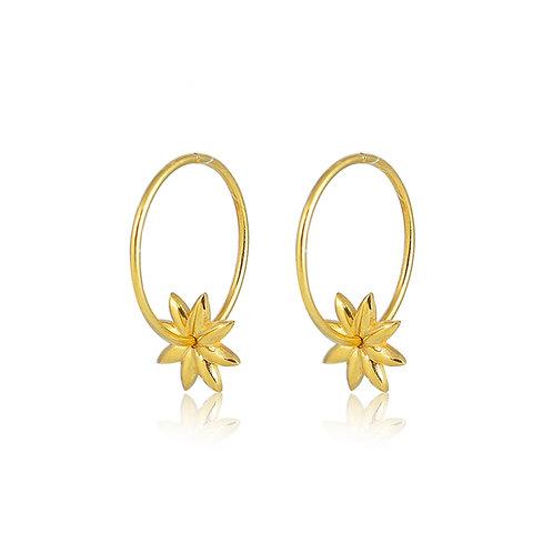 Micro Hoops _ Anise earrings