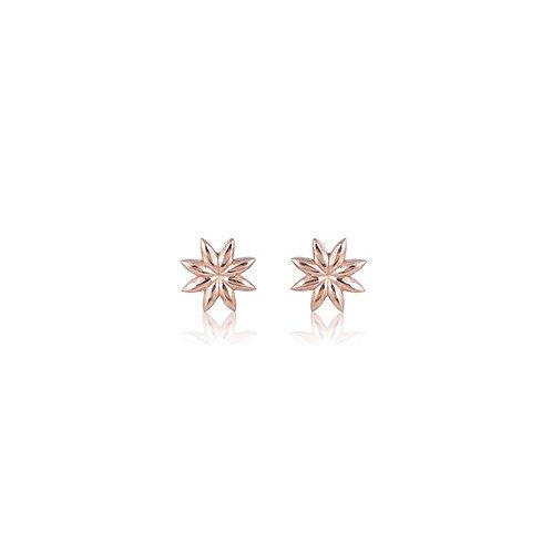 Micros _ Anise Earrings in 14k | 18k Gold