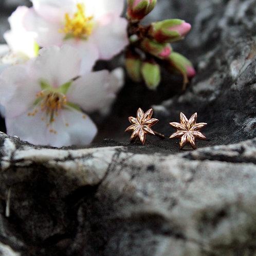 Micros _ Anise earrings