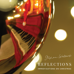 Stephen Wallack - Reflections