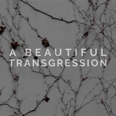 A Beautiful Transgression - Ross Christopher