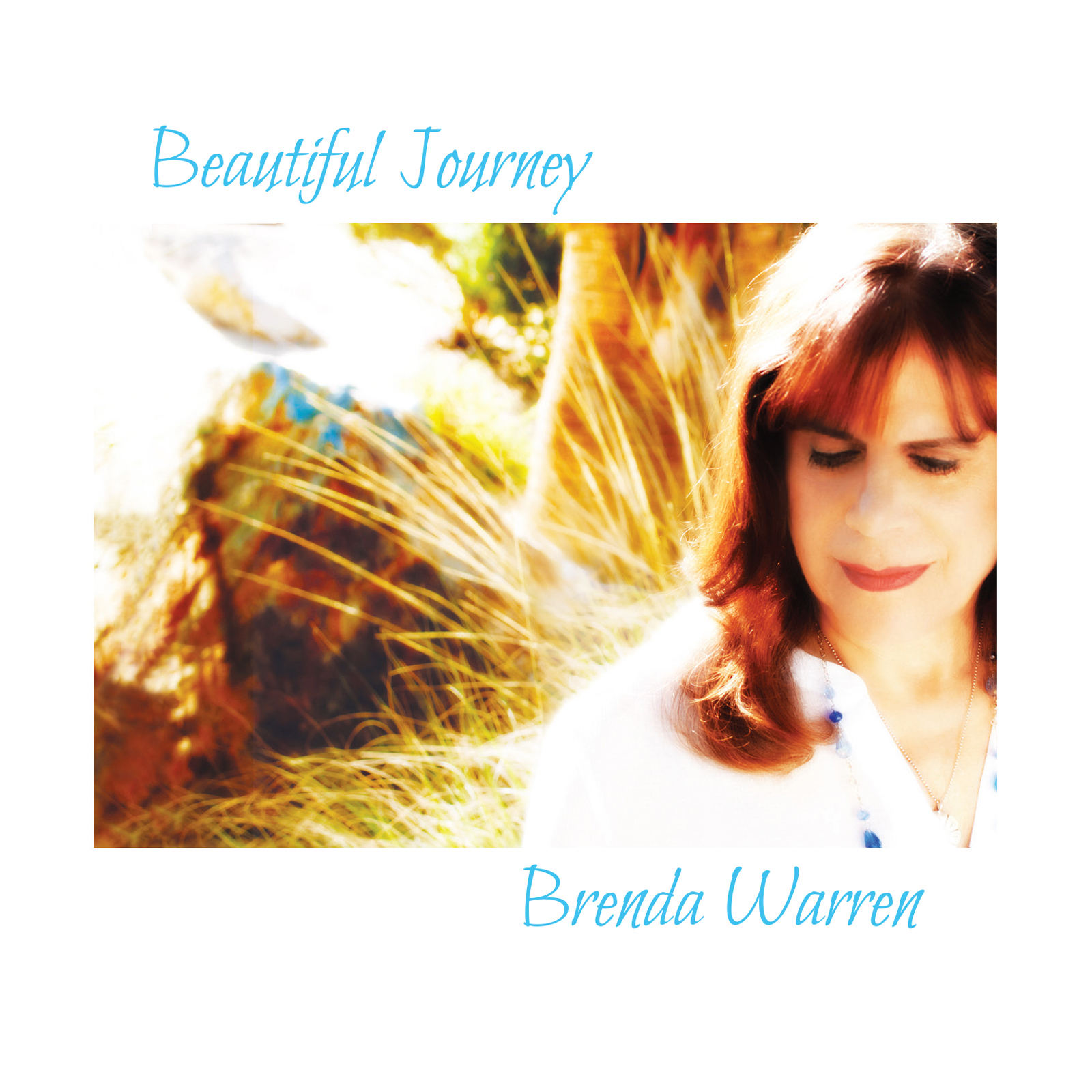 Beautiful Journey - Brenda Warren COVER.