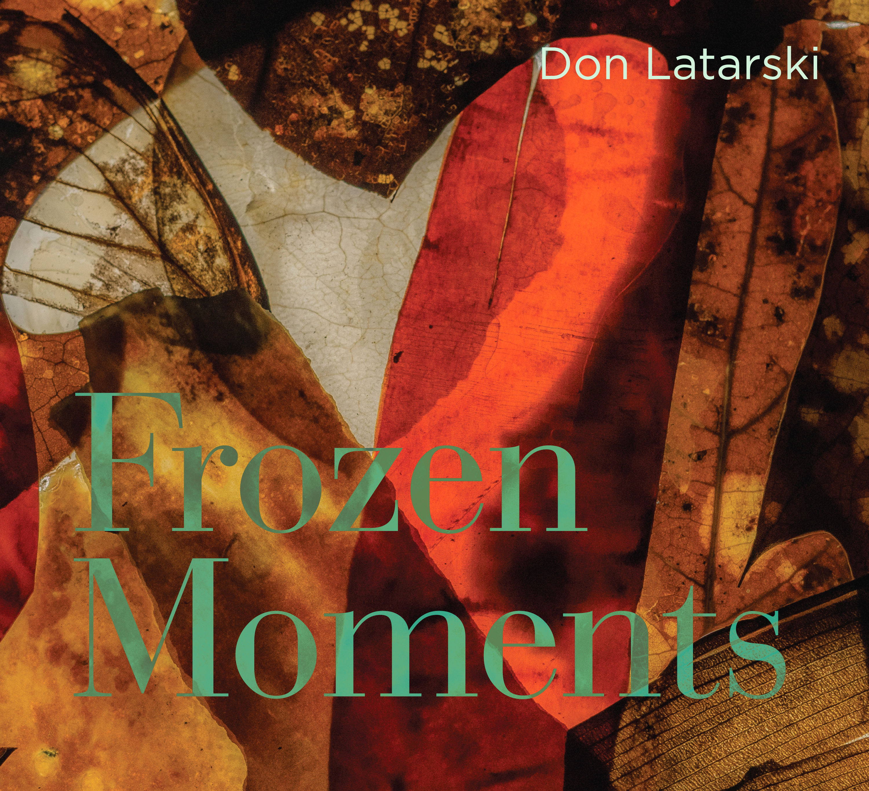 Frozen Moments- Don Latarski COVER