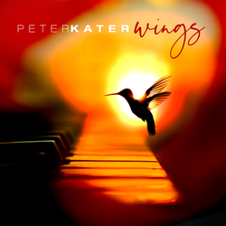 Wings - Peter Kater