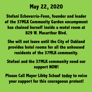Click Here to See Stefani Speaking About Her Protest