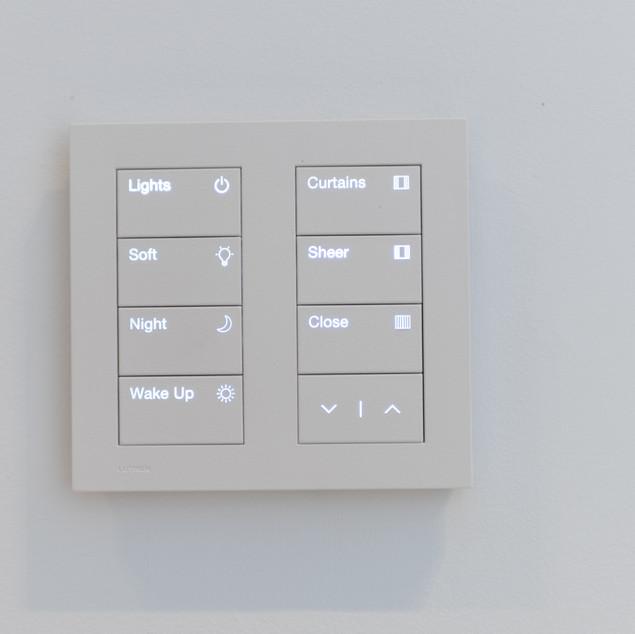 Lutron Palladiom Keypad