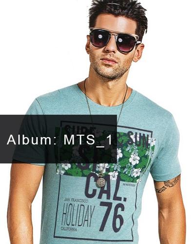 MTS_1