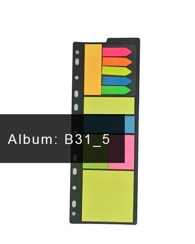 B31-5