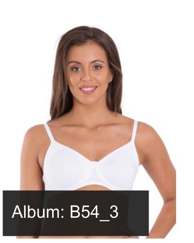 B54_3
