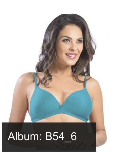 B54_6
