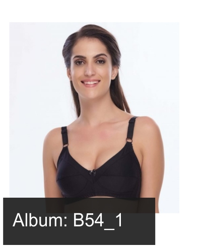 B54_1