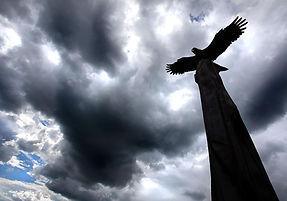 eagle - riverside park.jpg