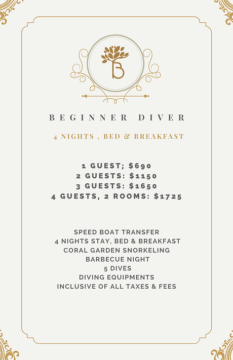 Beginner Diver.png