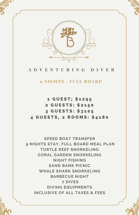 Adventuring Diver.png