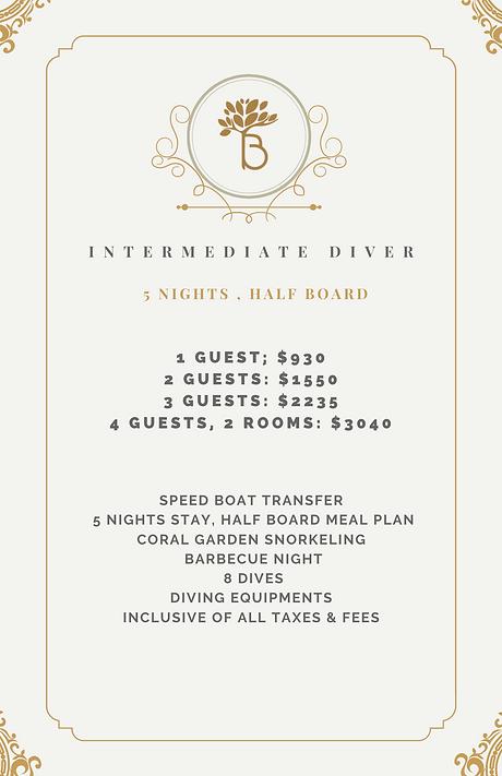 Intermediate Diver.png