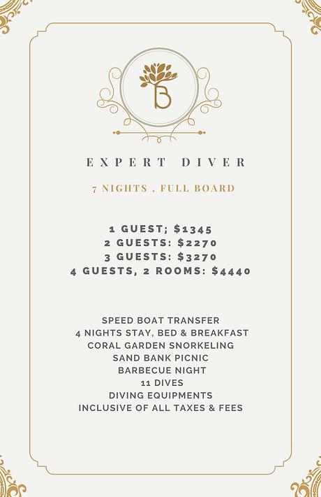 Expert Diver.png