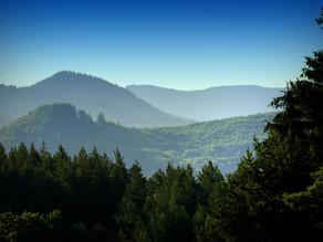 Winterfield Peaks Trail: Challenge meets Beauty