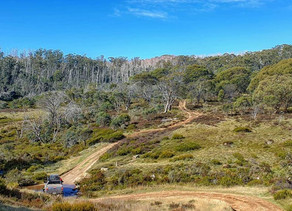 TRIP REPORT: Victorian High Country Map Recon: Success!