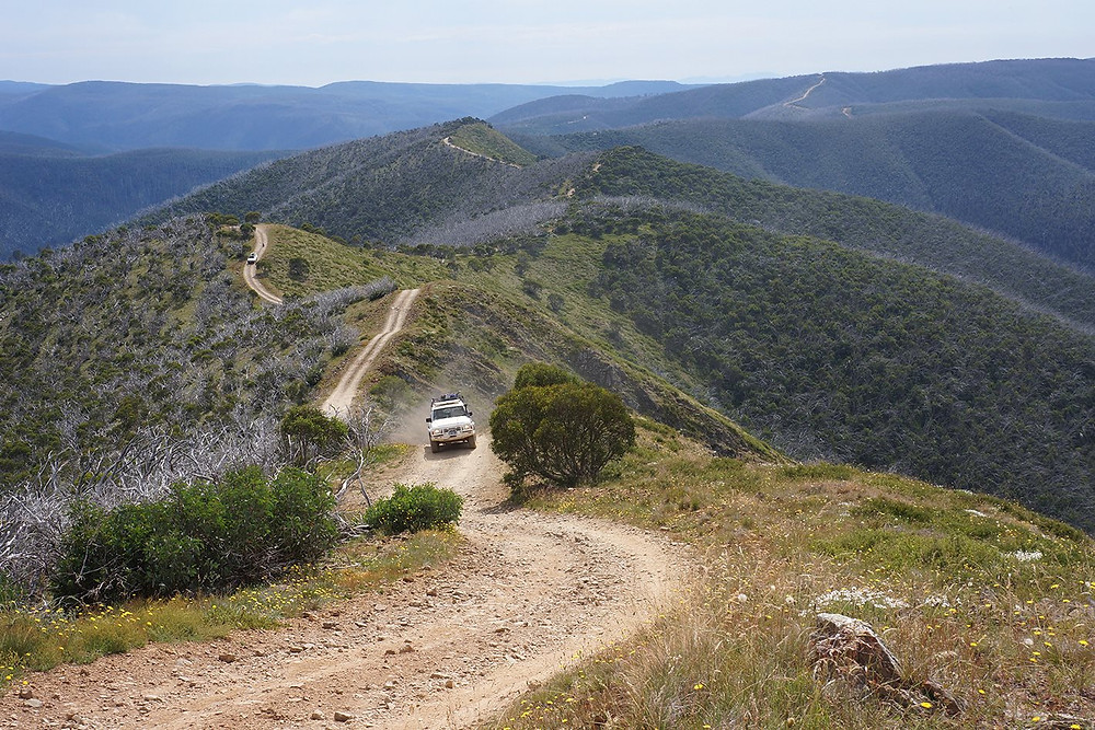 Ble Rag Range Track, Victorian High Country