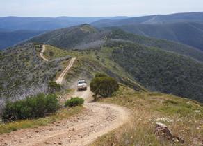Blue Rag Range Track: The Longest Dead End Track in the Southern Hemisphere