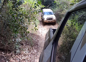 How to Shift and Hold Gears When Offroad